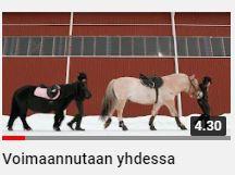 Voimaannutaan yhdessä videon kuvakaappaus. Kaksi tyttöä taluttaa hevosia maneesin edessä talvisessa maisemassa.